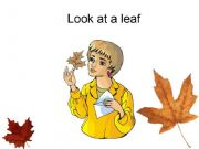 English powerpoint: Autumn part three