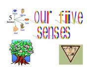 English powerpoint: Five senses