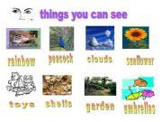 English powerpoint: Five senses - sight
