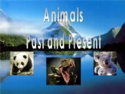 English powerpoint: Animals Past and present