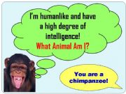 English powerpoint: Animal Riddles
