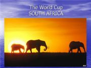 English powerpoint: THE WORLD CUP - SOUTH AFRICA