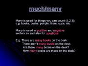 English powerpoint: Much and Many