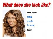 English powerpoint: What do they look like? (Hair)
