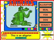 English powerpoint: ANIMALS (*20 slides*)