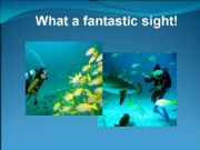 English powerpoint: What a fantastic sight!