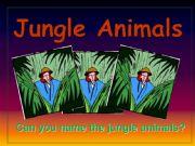 English powerpoint: Jungle Animals