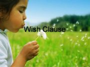 English powerpoint: wish clause