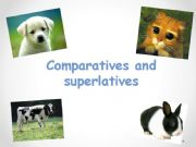 English powerpoint: Comparatives and Superlatives with animals