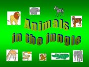 English powerpoint: Animals in the jungle