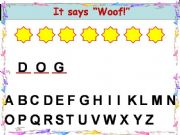 English powerpoint: Pets Quiz