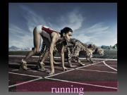 English powerpoint: 2/3 Sports