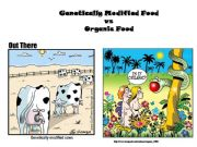 English powerpoint: Genetically Modified Food