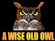 English powerpoint: A wise old owl