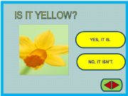 English powerpoint: Yes / No questions game