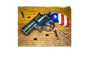 English powerpoint: Guns in the USA