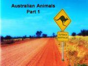 English powerpoint: Australia: Australian Animals (Part 1)