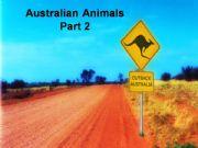 English powerpoint: Australia: Australian Animals (Part 2)
