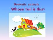 English powerpoint: Whose tail is that ?