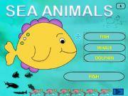 English powerpoint: Sea Animals