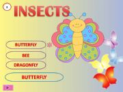 English powerpoint: Insects