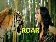 English powerpoint: katy perry - roar