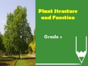 English powerpoint: plant structure and function