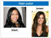 English powerpoint: Physical description (hair)