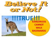 English powerpoint: BELIEVE IT OR NOT!