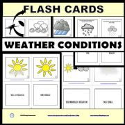 English powerpoint: Weather Conditions  - Task Cards