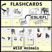 English powerpoint: Flashcards - Wild Animals