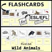 English powerpoint: Wild Animals - Flashcards - First Set
