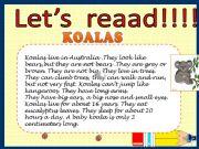 English powerpoint: Koalas