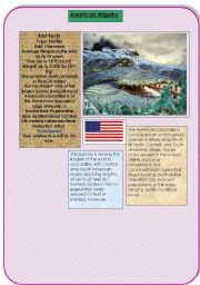 English Worksheets: the American aligator
