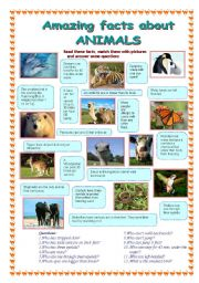 English Worksheet: Amazing facts about animals (1 part)