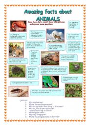 English Worksheets: Amazing facts about animals (2 part)