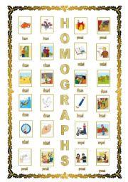 HOMOGRAPHS (08.08.08)