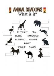 English Worksheets: Animal shadows