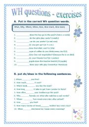 English Worksheets: Wh questions - practice