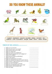 English Worksheets: DO YOU KNOW THESE ANIMALS?