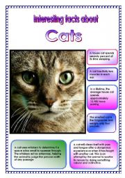 English Worksheets:  Interesting facts about cats! (2 pages) (15.08.08)
