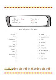 English Worksheets: gender