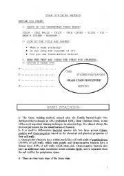 English Worksheets: GRAM  STANING  METHOD