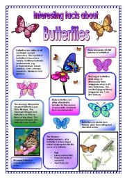 English Worksheets:  Interesting facts about butterflies! - did you know that ... (PART 1)