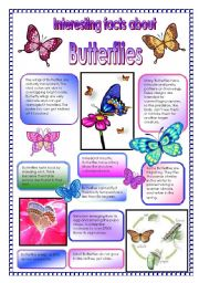 Interesting facts about butterflies! - did you know that ... (PART 2)