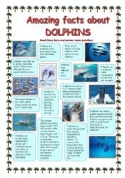 English Worksheets: Amazing facts about DOLPHINS