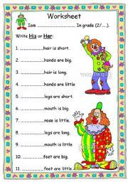 English Worksheet: pronoun his & her
