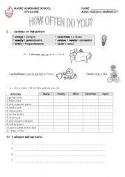 English Worksheet: how often do you