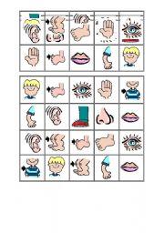 English Worksheets: Bingo Body 1