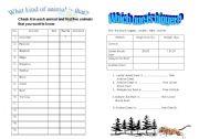 English Worksheets: Wild animal